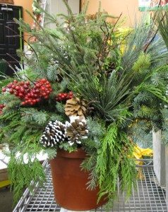 XMAS ARRANGEMENT GREENS