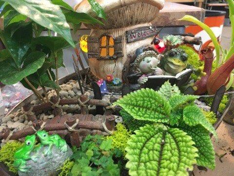 fairy gardening supply at Zywiecs